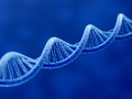 Dna d render of on blue background Stock Images