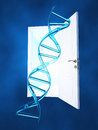 DNA Doorway Royalty Free Stock Image