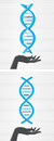 Dna helix in hand illustration of the Royalty Free Stock Image