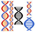 Dna isolated objects on white background vector illustration eps Stock Photo