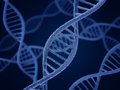 Dna molecule biology science and medical technology concept Stock Image