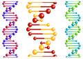Dna molecule with elements for biology or medicine concept design Royalty Free Stock Photo