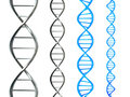 DNA Strand Royalty Free Stock Photo