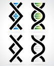DNA strand, helix Royalty Free Stock Photo