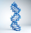 DNA strand model Royalty Free Stock Photo