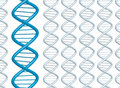 Dna strands Royalty Free Stock Photo