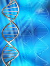 DNA strands Royalty Free Stock Images