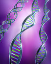 DNA Strands - Simple and dual helix Royalty Free Stock Photos