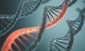 Dna structure long of the double helix in depth of view Stock Photo