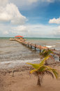 Dock on Coast of Belize Stock Photo
