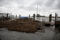 Dock Remains after Hurricane Sandy Stock Photography