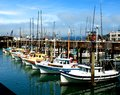 Docked sailboats colorful in san francisco Royalty Free Stock Image