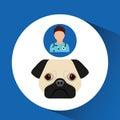 Doctor cartoon veterinarian dog pug