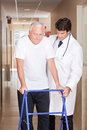 Doctor helping patient use walker a assisting a senior citizen onto his Royalty Free Stock Photo