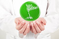 Doctor holding nature symbol in her hands woman Royalty Free Stock Photo