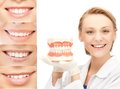 Doctor with jaws and smiles healthcare medical stomatology concept Royalty Free Stock Photos