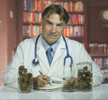 Doctor with medical marijuana and writing prescription Stock Photos