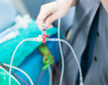 Doctor push medical solution in intravenous fluid line the Stock Photo
