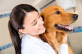 Doctor vet hugging beautiful dog Stock Image