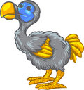 Dodo Bird Royalty Free Stock Image