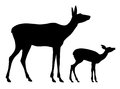 Doe and her baby vector illustration of silhouettes Stock Photos