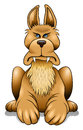 Dog angry cartoon watch keeping an eye on you Royalty Free Stock Photography