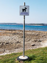 Dog beach sign dogs allowed on Royalty Free Stock Photo