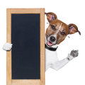 Dog behind blackboard banner waving Stock Photography