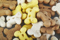 Dog biscuits Royalty Free Stock Photo