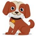Dog biting bone Royalty Free Stock Photo