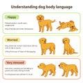 Dog body language Royalty Free Stock Photo