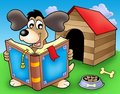 Dog with book in front of kennel Stock Image