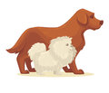 Dog breed collection. Vector Illustration.