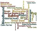 Dog Breed Word Cloud Stock Photos