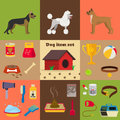Dog care object set, items and stuff, vector cartoon illustration