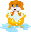 Dog cartoon bathing illustration of Stock Photography