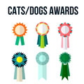 Dog or cat competition winner