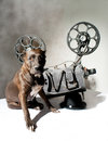 Dog and cinema american staffordshire terrier movie projector with the film Royalty Free Stock Photography