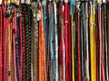 Dog collars Royalty Free Stock Photo