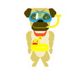 Dog diver illustration of on white background Stock Photography