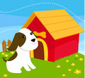 A dog with a dog house Stock Photography