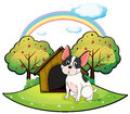 A dog beside a dog house illustration of on white background Stock Photos