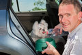 Dog drinking water inside a car from his owner Stock Photography