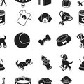 Dog equipment pattern icons in black style. Big collection of dog equipment vector symbol stock illustration