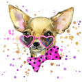 Dog fashion T-shirt graphics. dog illustration with splash watercolor textured background. unusual illustration watercolor puppy