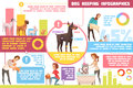 Dog Feeding Training Cartoon Infographics Royalty Free Stock Photo