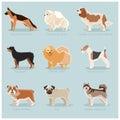 Dog flat icons set
