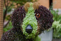 Dog floral sculpture Stock Image