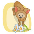 Dog with flowers greeting card Stock Images