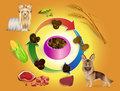 Dog food in bowls and pet feed ingredi Royalty Free Stock Photography